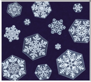 HL-Snowflake-Group 2.jpg